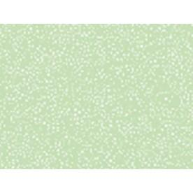 Оливка перламутр глянец +526 грн.