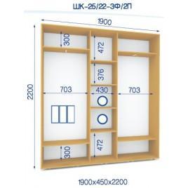 Трехдверный шкаф купе ШК 25/22-2П (190*45*220)